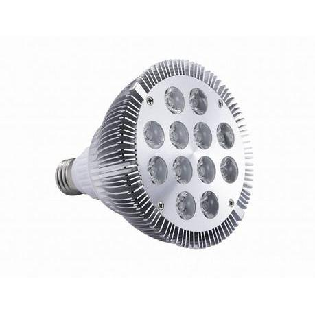 12W High Power LED Grow Light red and blue 10:2