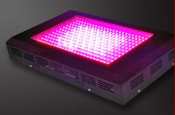 600W LED Grow Light 300x2w