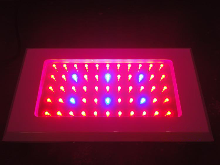 2011 Hot Sell 120w Grow Led Light(55x2W)