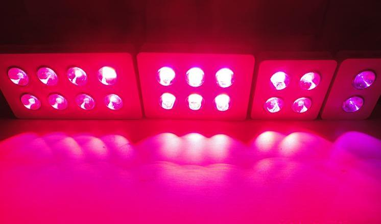400W Integrated COB LED Grow Light 4X100W
