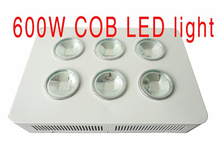 600W Integrated COB LED Grow Light 6X100W