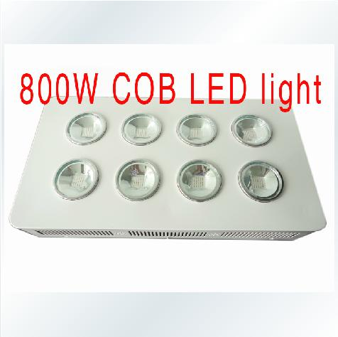 800W Integrated COB LED Grow Light 8X100W