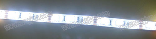 White 5050 SMD led flexible light strip